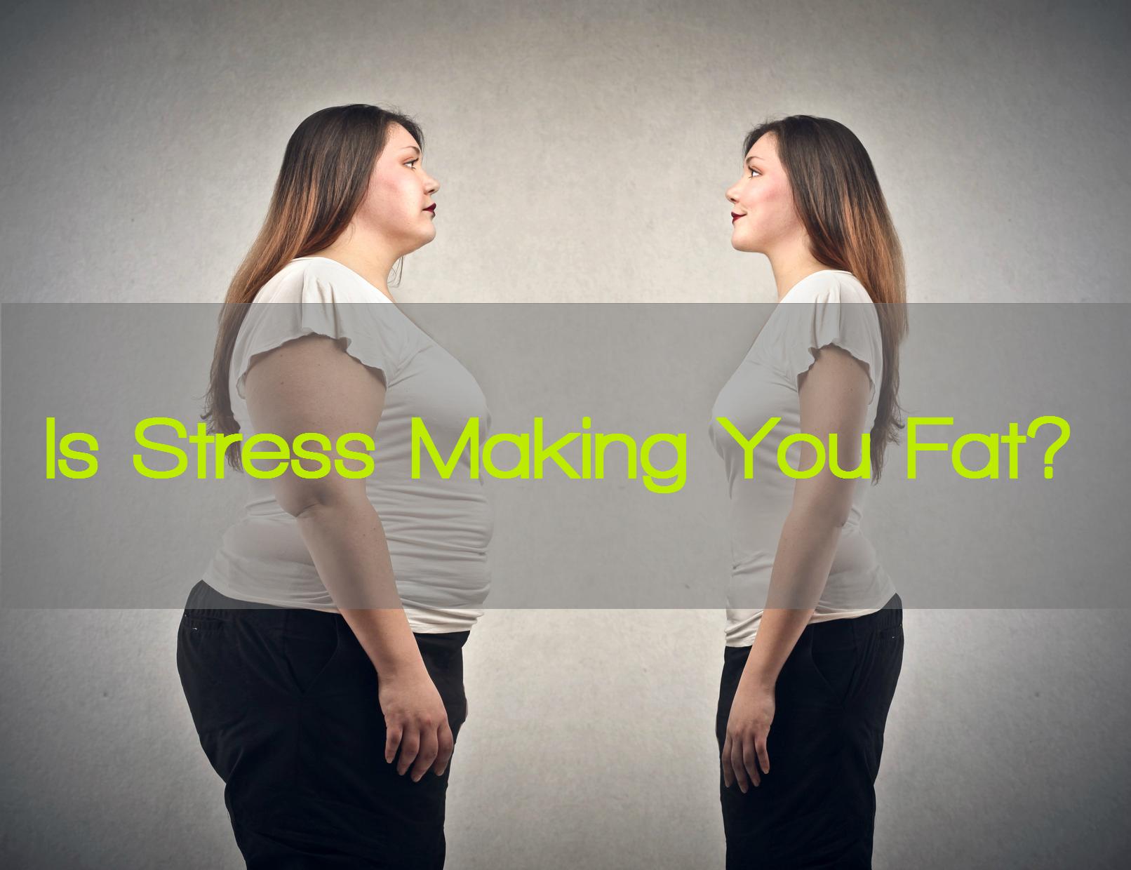STRESS FAT